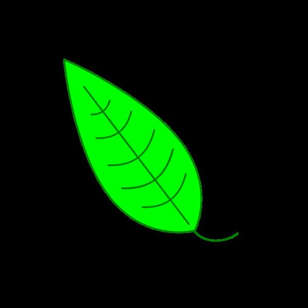 leaf tutorial inkscape2