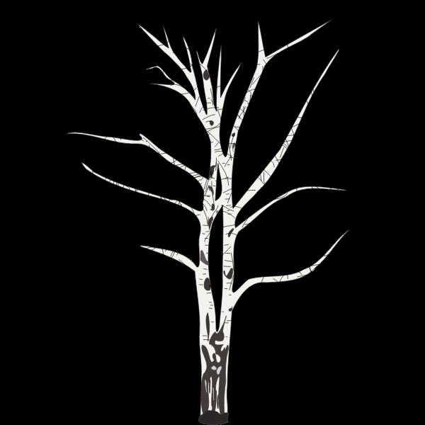 leafless birch