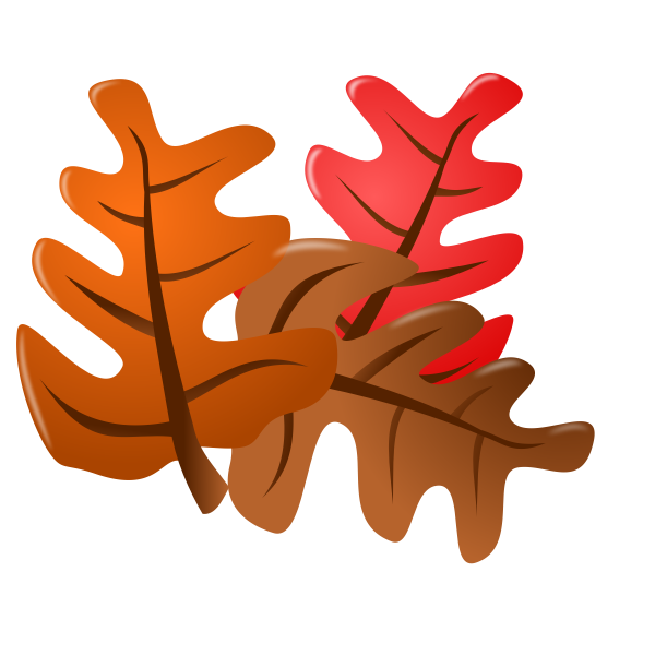 Vector image of autumn leaves