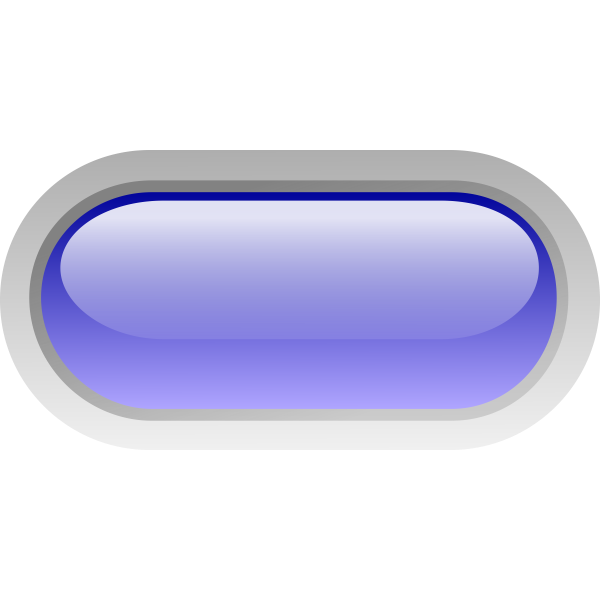 Pill shaped blue button vector image
