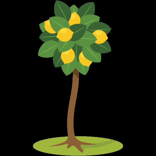 Lemon tree symbol