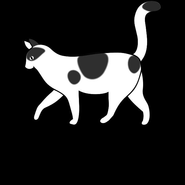 letter C for Cat