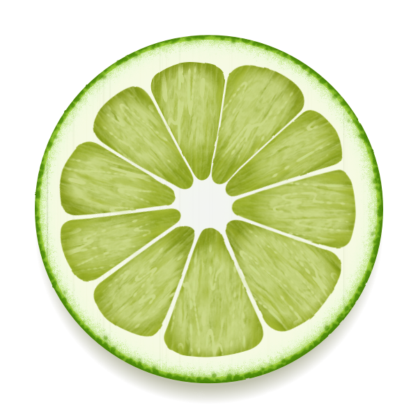Lime slice vector drawing