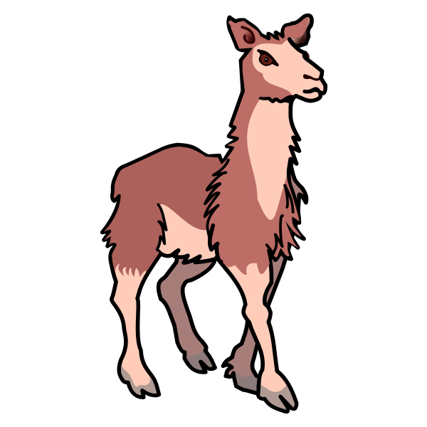 llama vector illustration