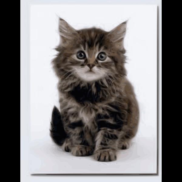Sweet kitten vector image