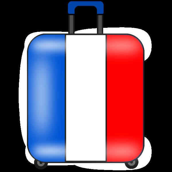 maleta suitcase valise