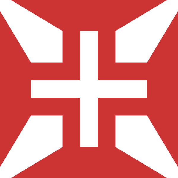 Cross of Portuguese air force vector image
