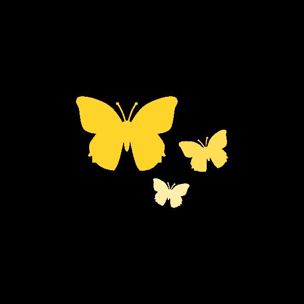 Vector graphics of butterflies