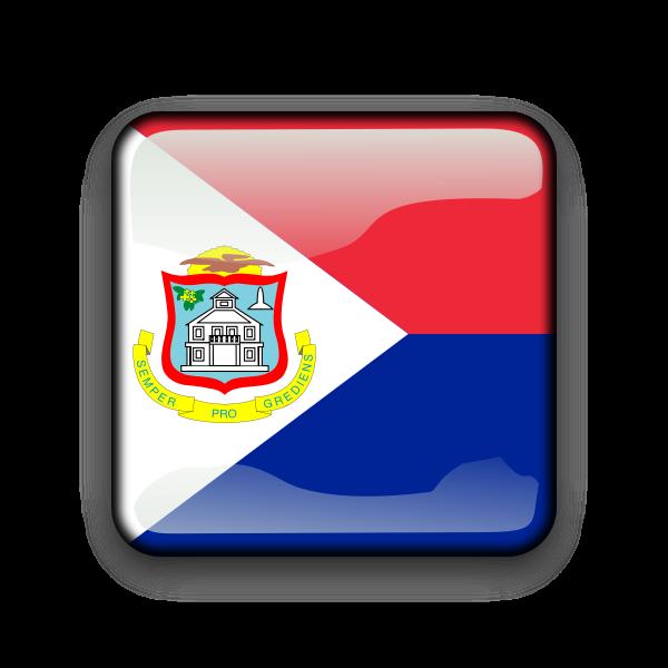 Saint Martin flag vector