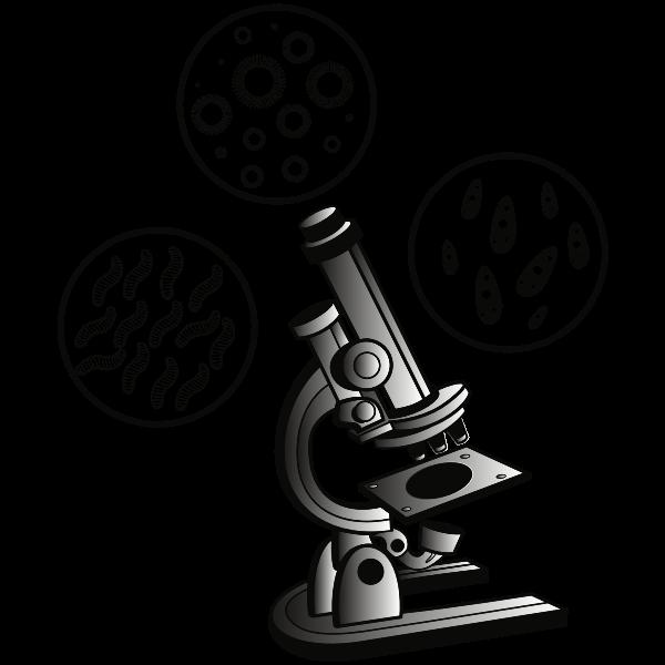 Microscope and virus