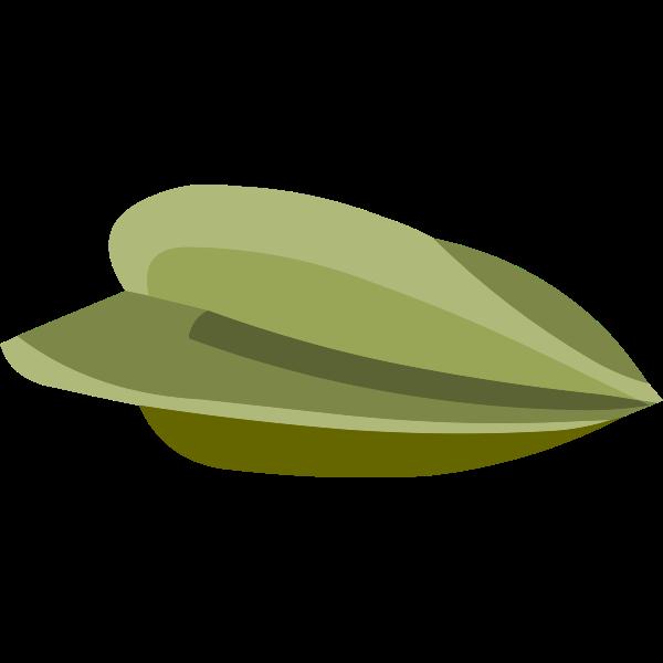 misc starfruit seed