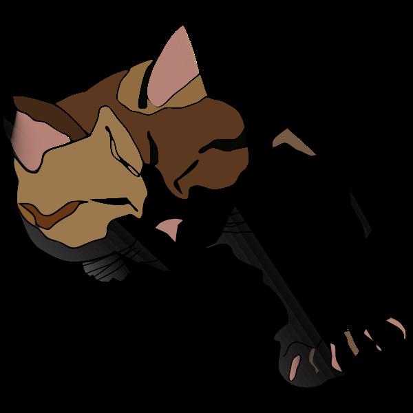 Sleepy Calico Cat