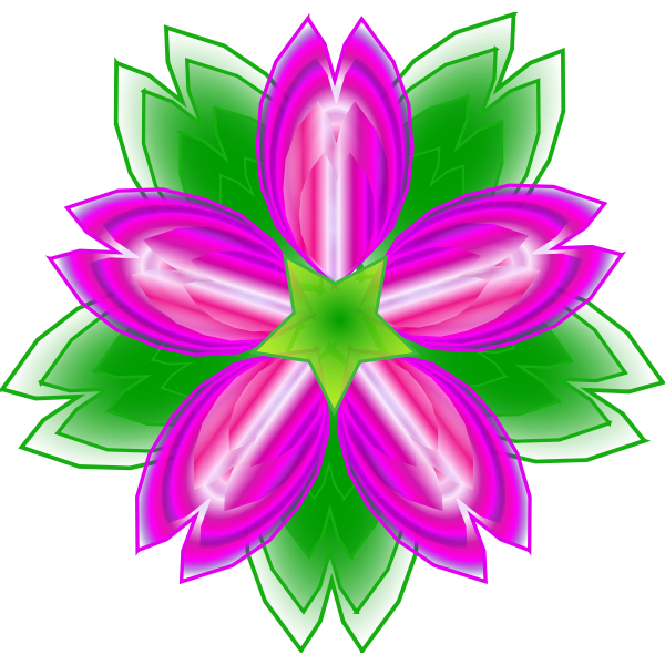 Indian Lotus vector illustration
