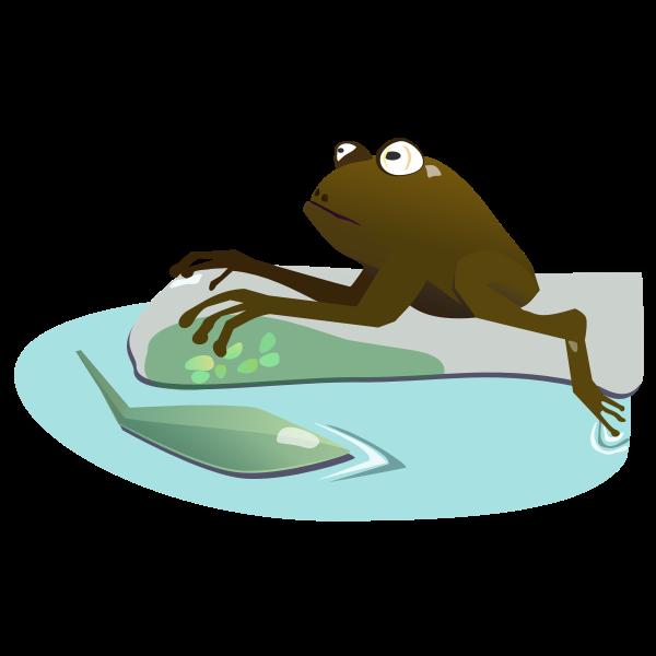 moist frog