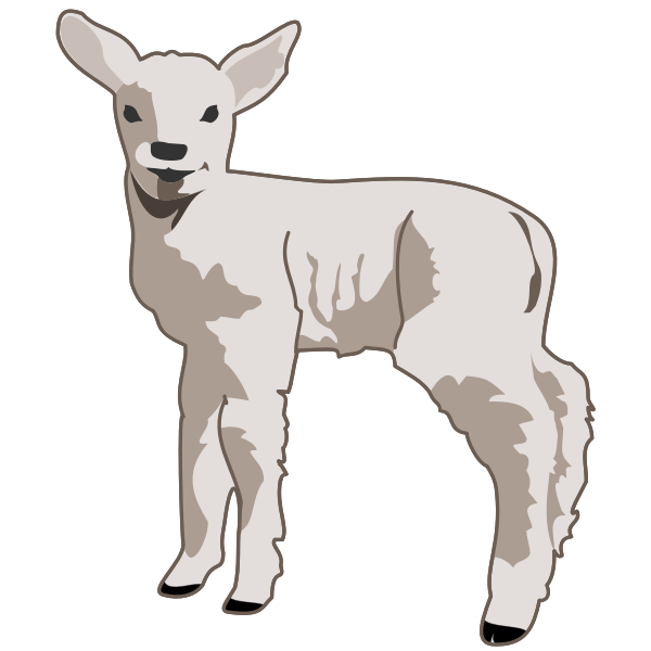Young lamb vector art