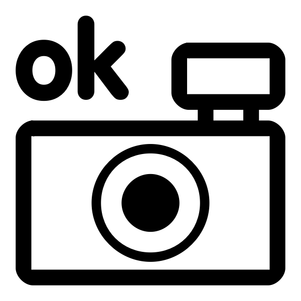 Vector drawing of photo camera black and white OK icon