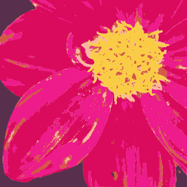 Dahlia flower vector graphics