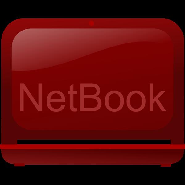 Netbook computer laptop
