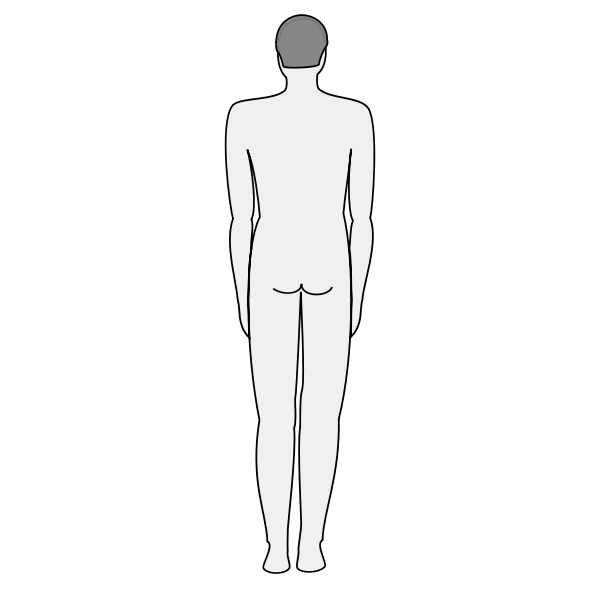 Male body silhouette - back