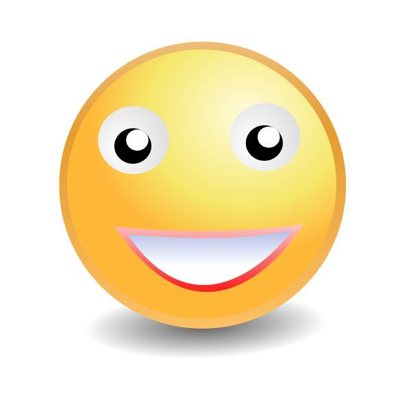 Smiley ladyface vector image