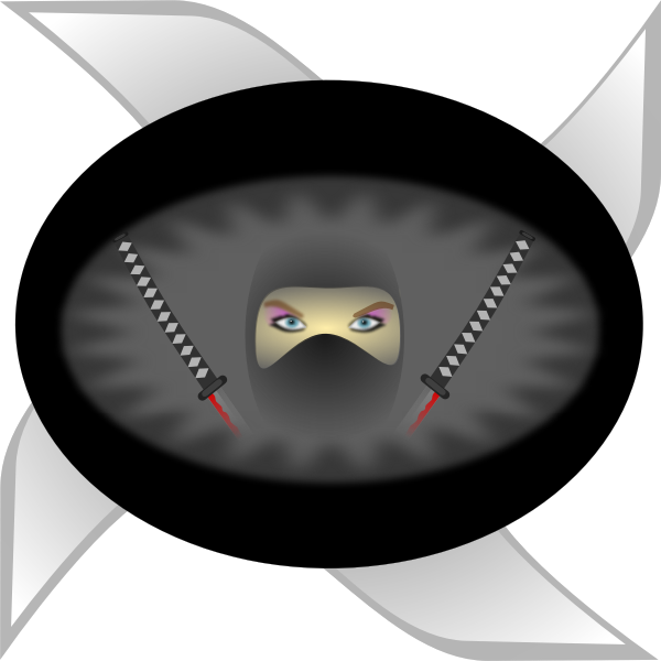 Ninja woman in black vector image