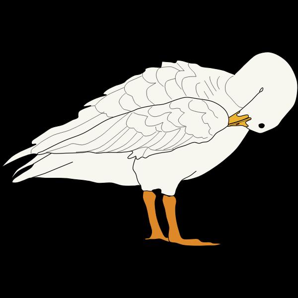 Goose (#4)