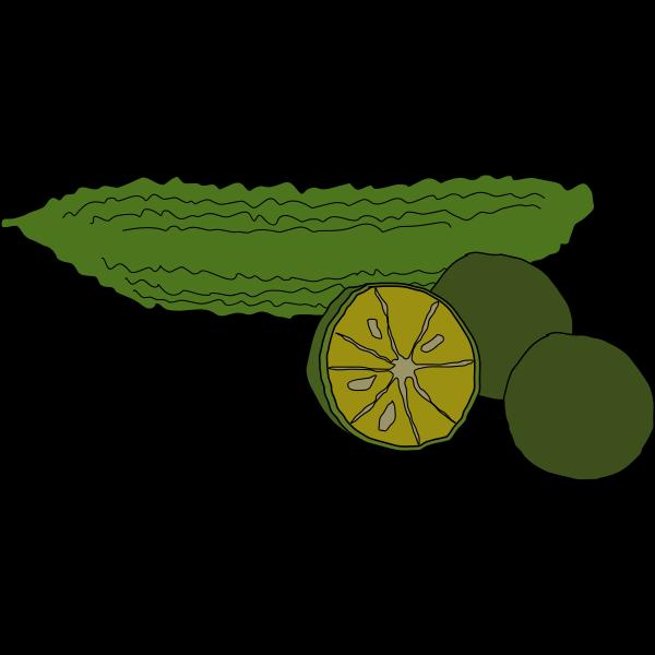 bitter melon and shiikuwasha