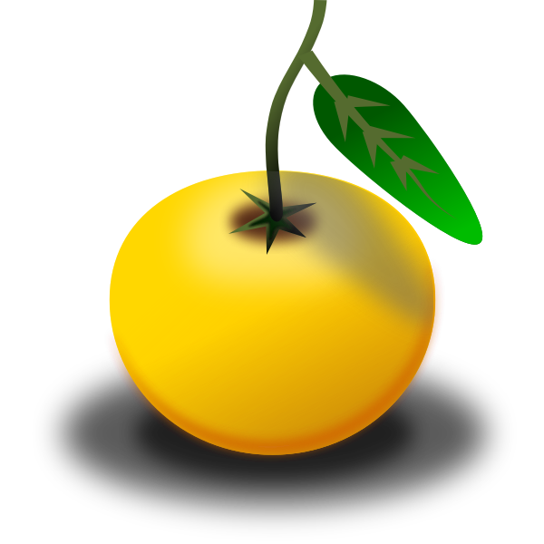 Vector clip art of ripe orange in color