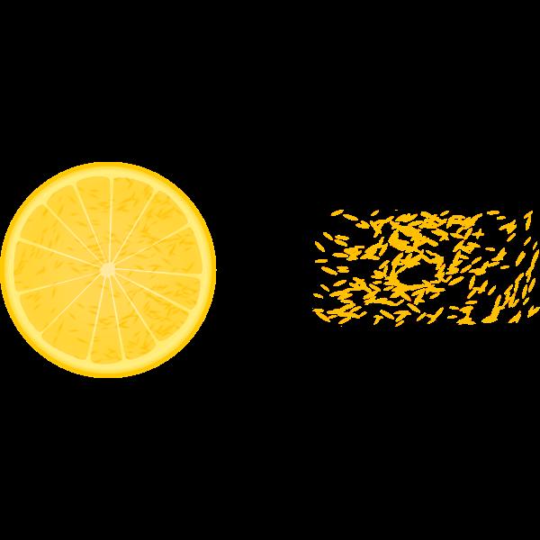 Half orange and orange bits vector clip art