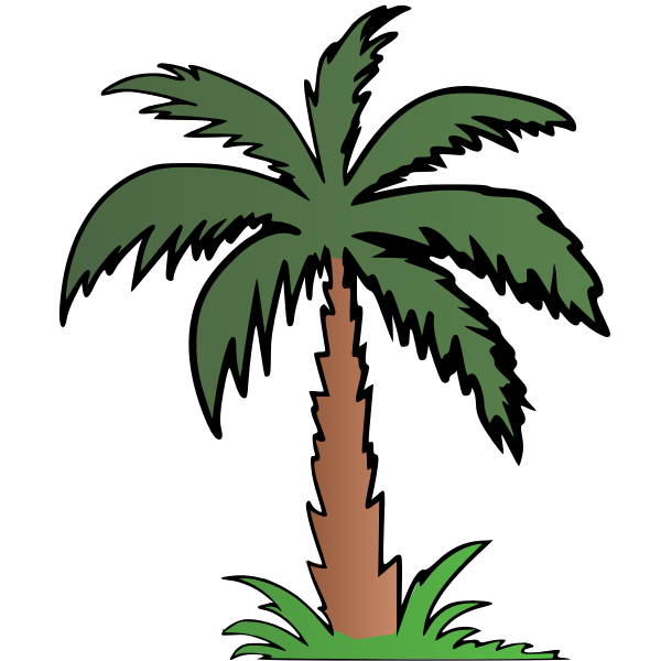 Palm tree in colour