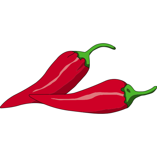 Vector illustration of Mexican chili peppers