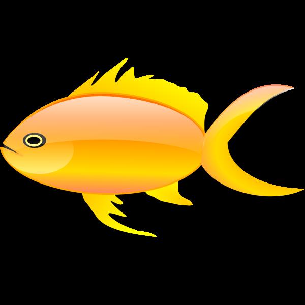 Vector image of glossy gold fish