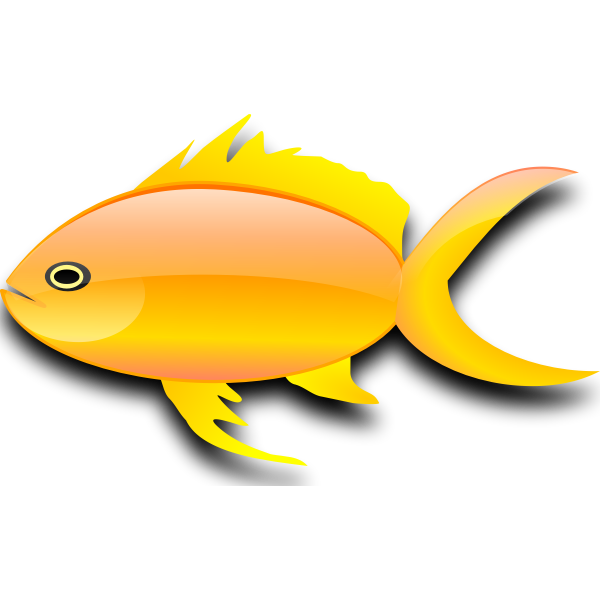 Vector image of glossy gold fish