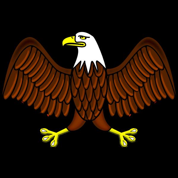 Color bald eagle vector image