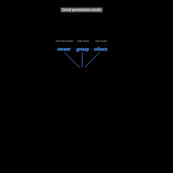 Linux permissions diagram vector image