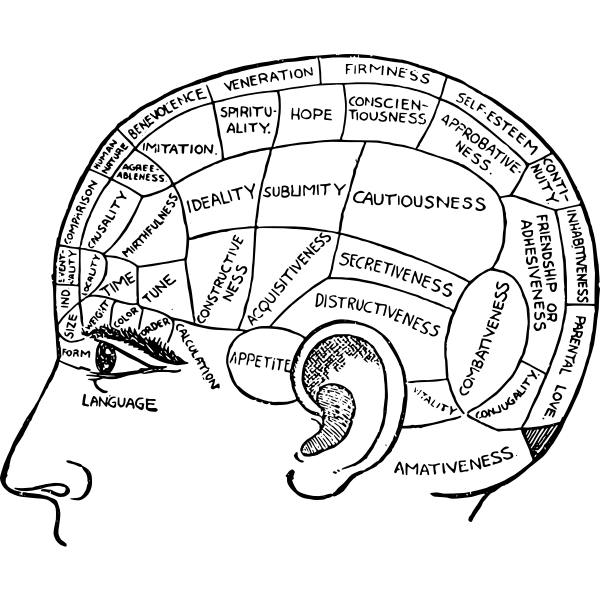 Phrenology chart