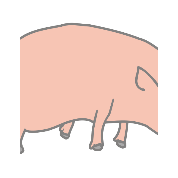 Vector image of orgami sculpture of pig