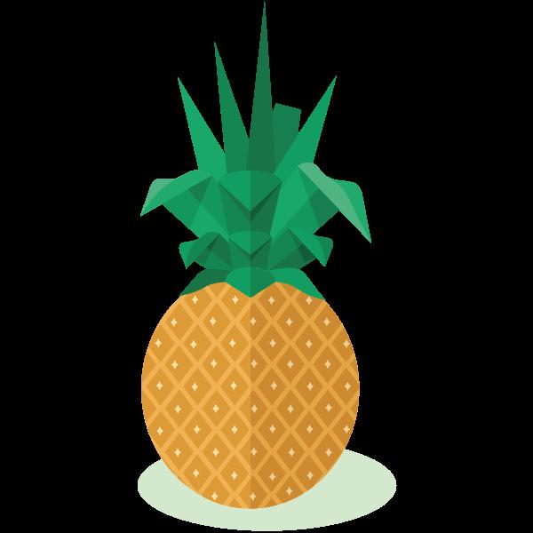 Pineapple fruit-1574260012