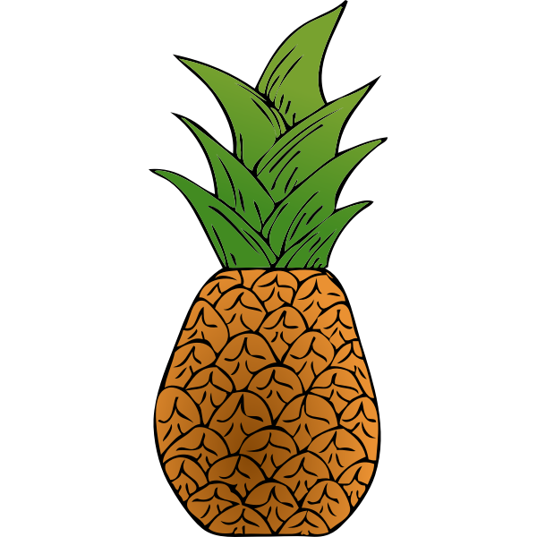 Vector image of tropical pineapple