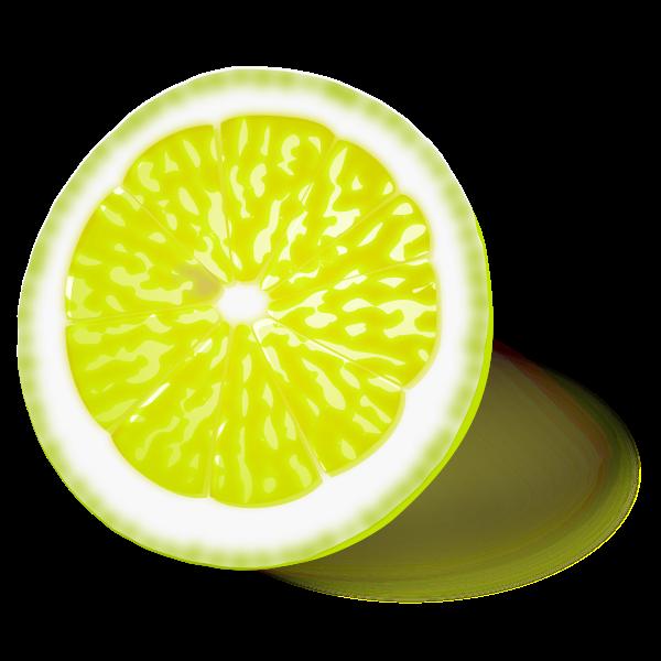 Lemon or lime vector image