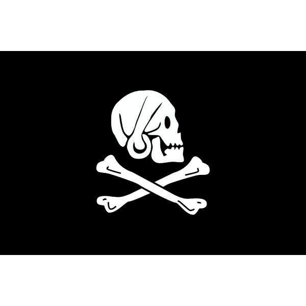 Vector illustration of pirate flag with skull looking sideways