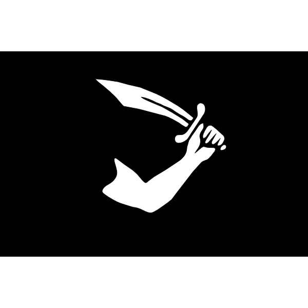 Vector image of black and white pirate flag