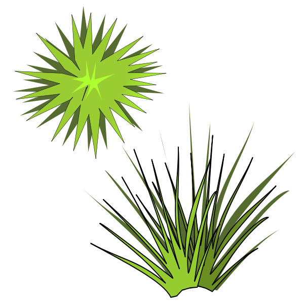 Vector illustration of green spiky plant with green sun above
