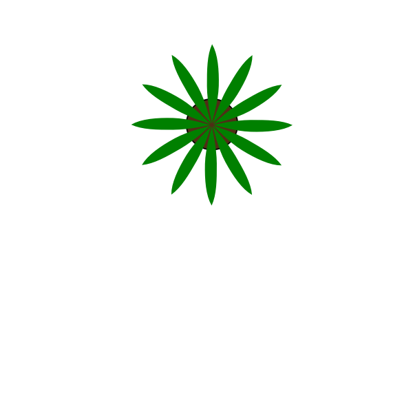 Green plant top view vector drawing