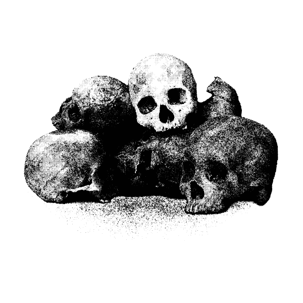 Vector image of bunch of skulls