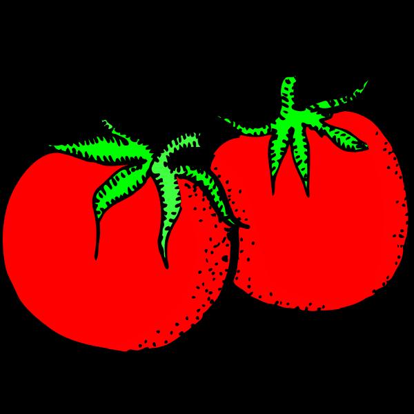 Architetto -- pomodori