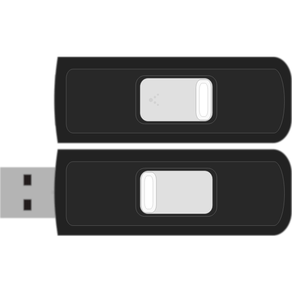 Sandisk Cruzer Micro 4GB flash drive vector image