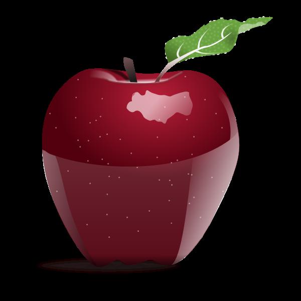 Photorealistic vector image of apple