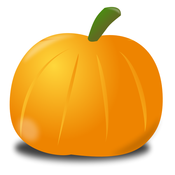 Pumpkin with shadow vector image