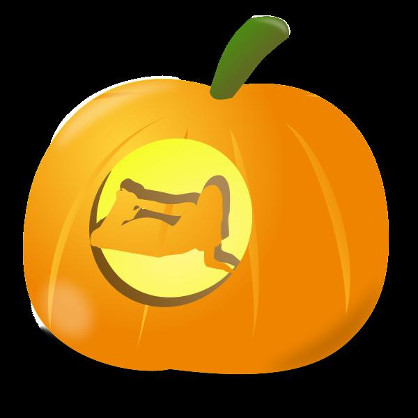 Girl pumpkin vector image